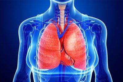 КТ грудной клетки при онкологических заболеваниях