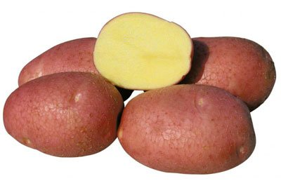 Картофель «Беллароза»