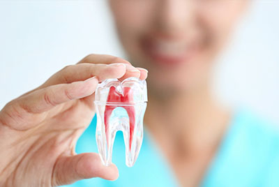 Эндодонтическое лечение каналов зуба в современной клинике