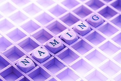 Статья для публикации в научном журнале  «Особенности нейминга в формировании брендинга компании»